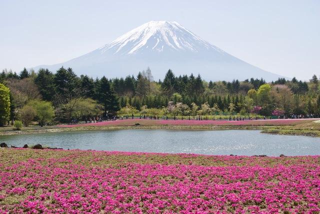 習字 書道 富士山 山梨 河口湖
